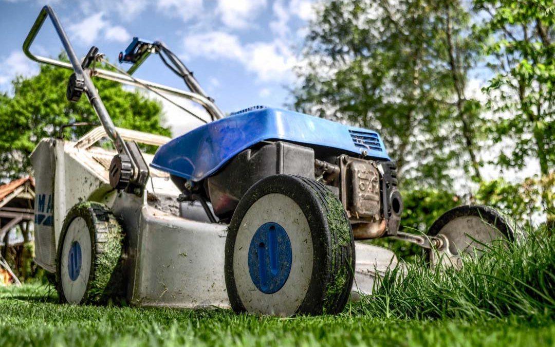 ¡Ten listo tu jardín para lucirlo en primavera!
